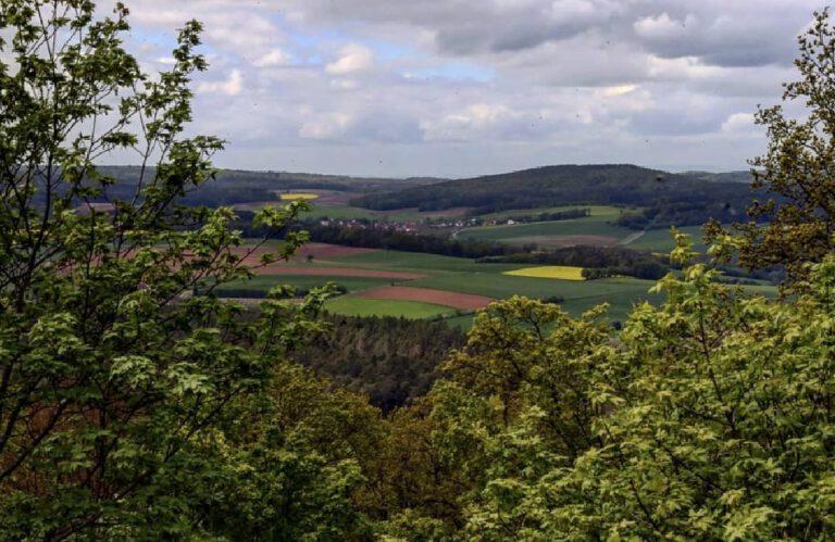 Eine weite Landschaft die zum Hintergrund hin hügelig wird. Davor sind grüne und gelbe Felder. Das Bild wird im Vordergrund von Bäumen umrahmt.