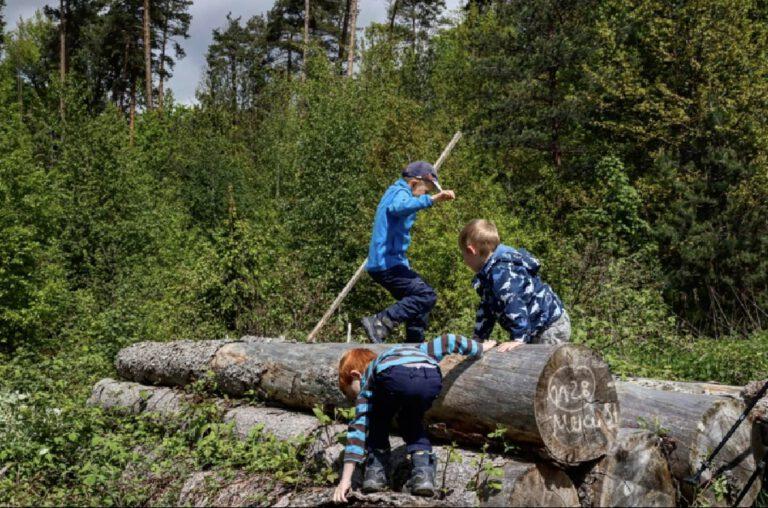 3 Kinder spielen auf einem Stapel Baumstämme.