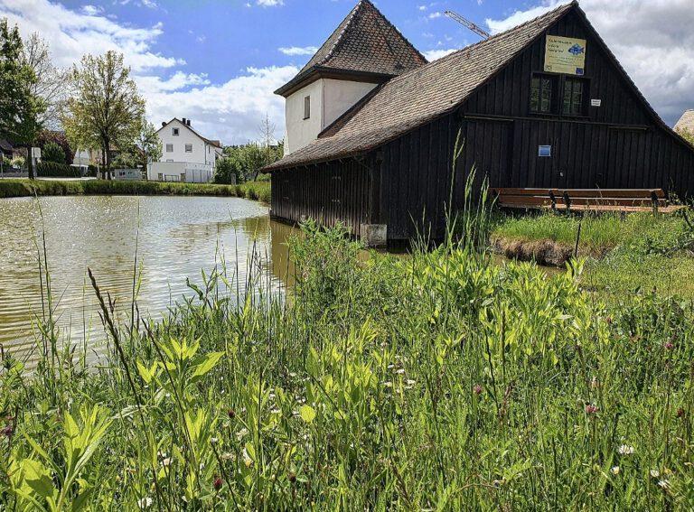 Ein Weiher und eine Hütte.