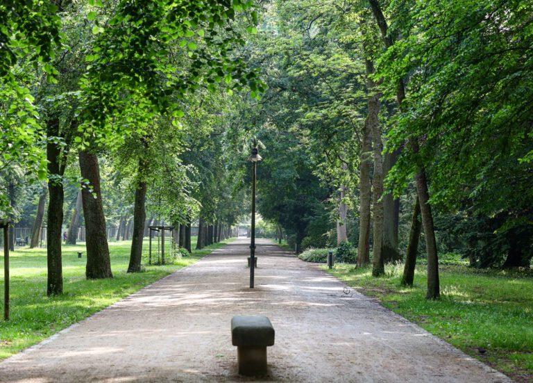 Eine lange Allee mit grünen Bäumen rechts und links. In der Mitte wechseln sich Steinbänke und Laternen ab.