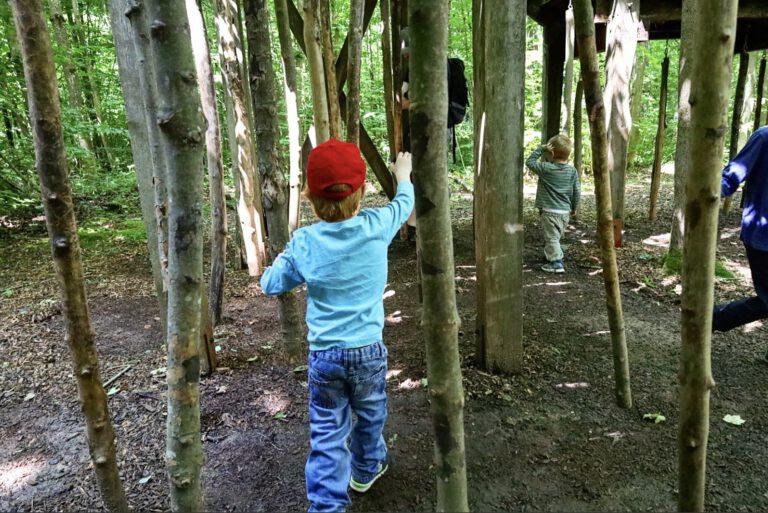 Drei Kinder laufen zwischen hängenden Ästen hin und her.