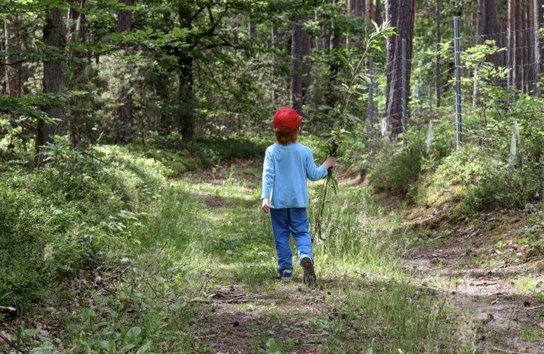 Mein Mittlerer der auf einem Waldweg läuft. In seiner Rechten Hand hält er ein paar Blumen.