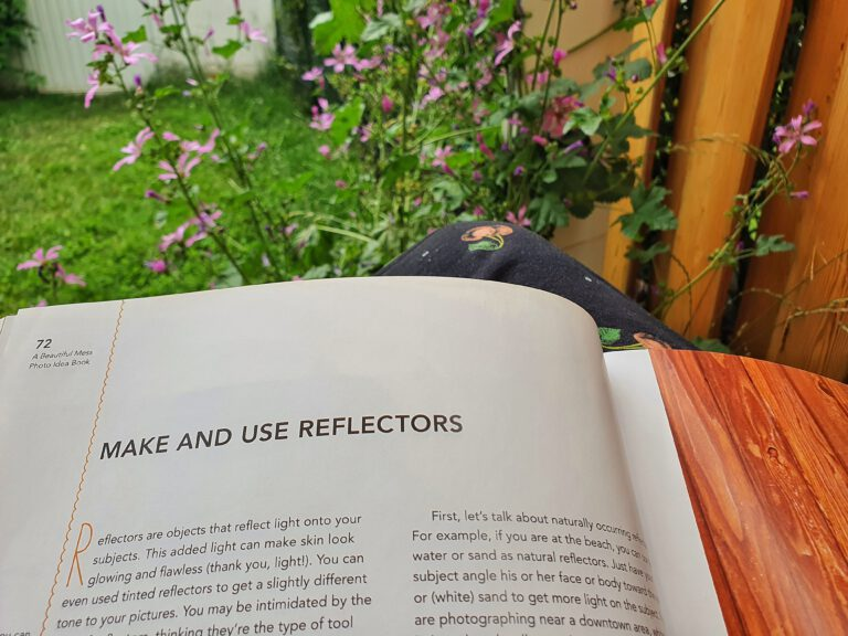 Eine lila blühende Pflanze und ein Buch.