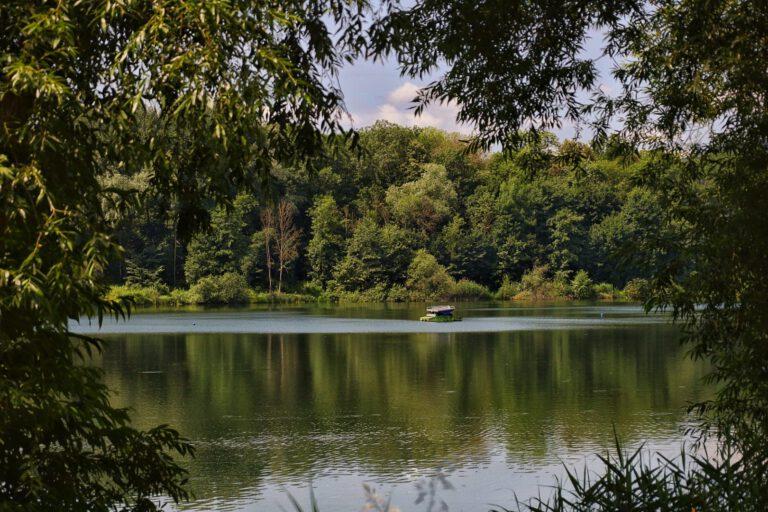 Ein See umgeben von Bäumen. In der Mitte schwimmt eine Plattform.