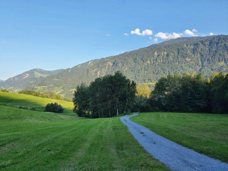 Ein Weg zwischen Wiesen der zu Bergen führt.