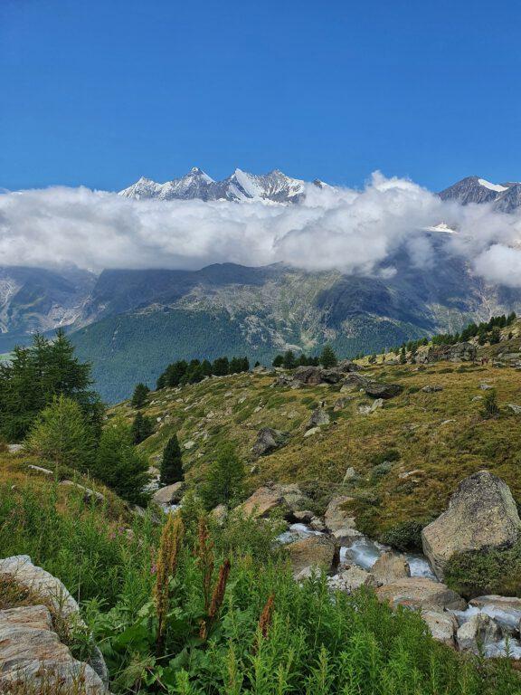 Wolkenverhangene und schneebedeckte Berge. Im Vordergrund eine steinige und grüne Wiese