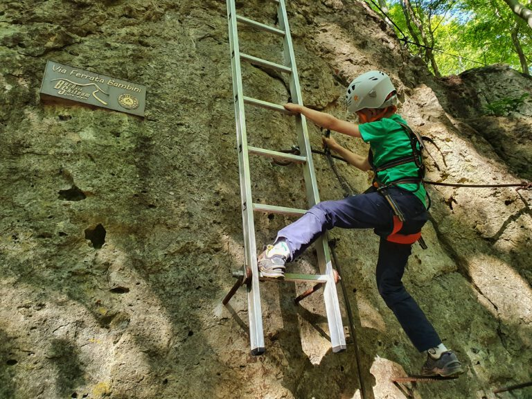 Ein Kind in Kletterausrüstung klettert an einem Felsen eine Leiter nach oben.