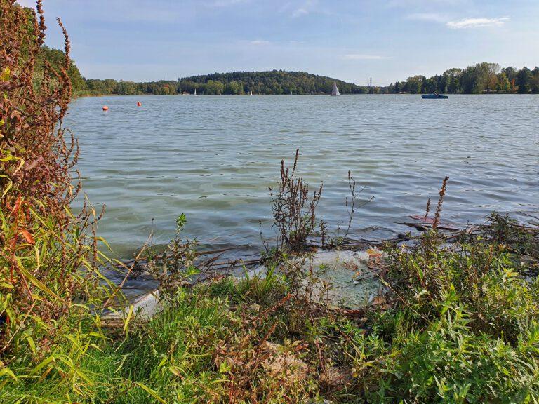 Der Dechsendorfer Weiher mit etwas Ufer im Vordergrund und ein paar Segelbooten auf dem Wasser.